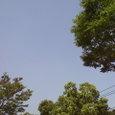 夏休みの青空