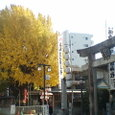 いちょうと櫛田神社