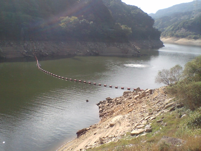 ダムの貯水側