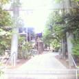 熊野道祖神社