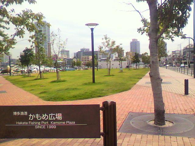 かもめ広場